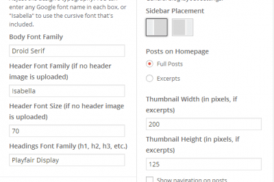 Settings within the WordPress Customizer