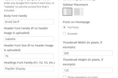 Settings within the WordPress Customizer